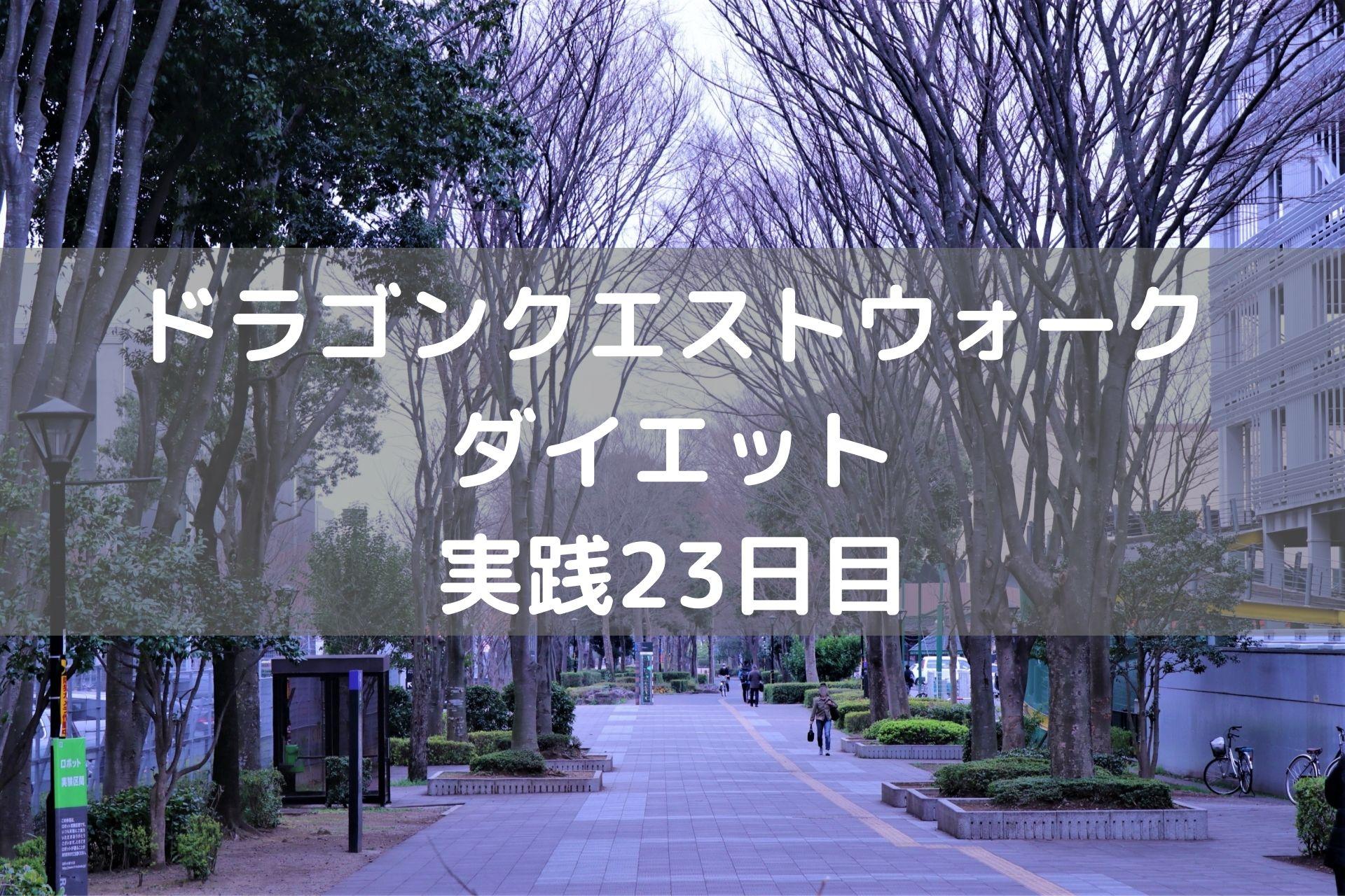 ストーリー第5章コンプリート! 【DQウォーク実践23日目】