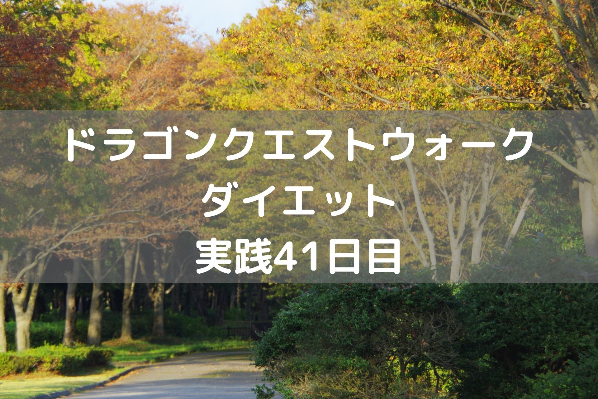 ドラゴンメダルどうしよう・・・ 【DQウォーク実践41日目】