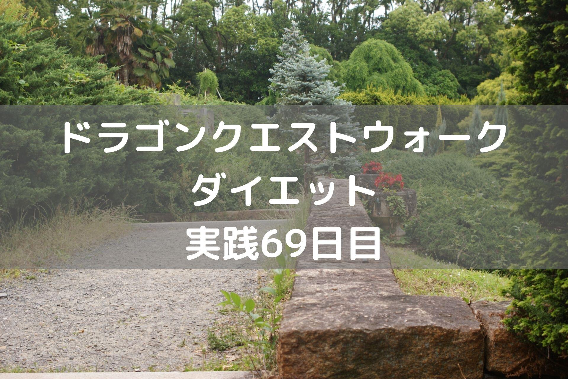 しりょうのきし しぐさ解放!! 【DQウォーク実践69日目】